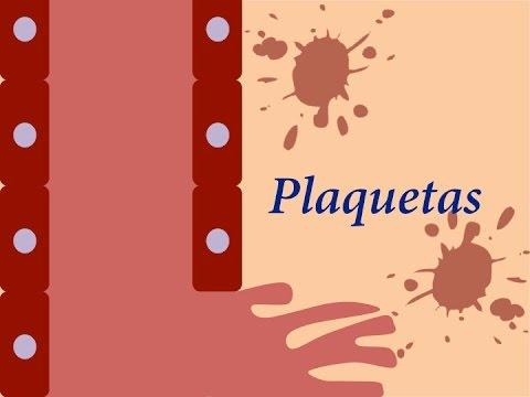 EMP Fisiología: Plaquetas