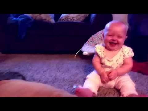 Baby Laughing Hysterically At Siblings