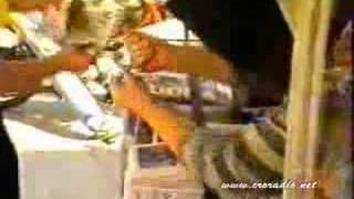 SPLIT 1989 TRIO RIO POLA SPLITA TRAZI KITA