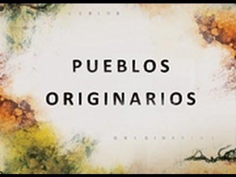 Pueblos originarios. Programa