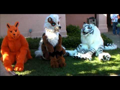 fashion furry fandom subculture animal costumes