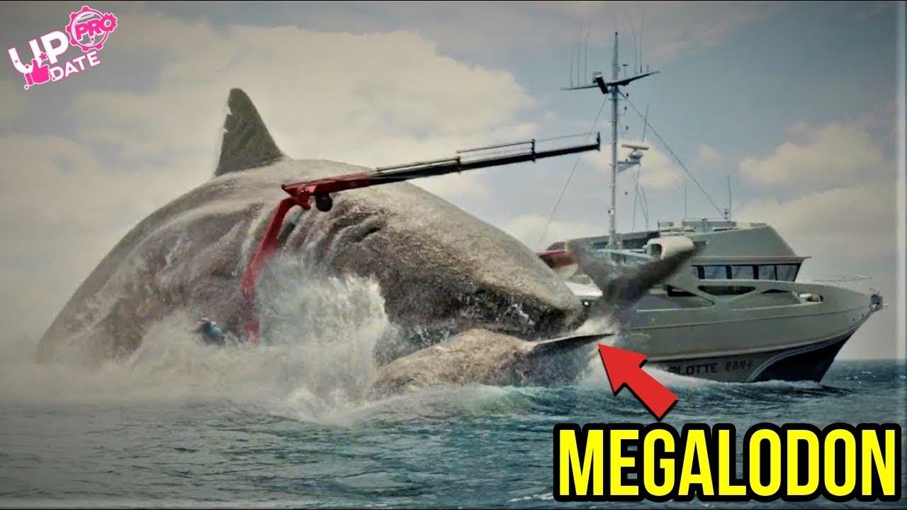7700 Gambar Ikan Hiu Megalodon Terbesar Terbaik