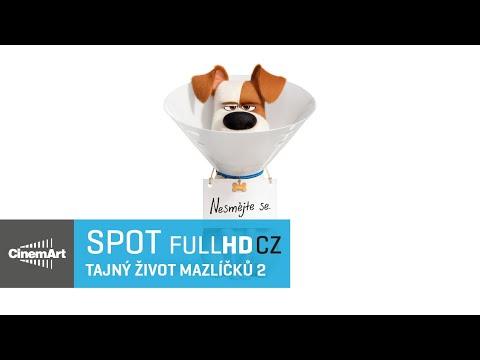 Tajný život mazlíčků 2 (2019) HD spot