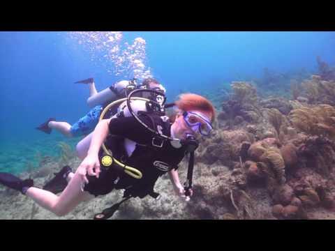 Feb  16, 2016 Discovery Scuba Roaton, Honduras