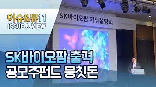 'SK바이오팜 효과?' 공모주펀드에 뭉칫돈 들어온다  …
