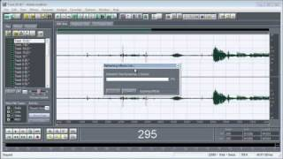 Autotune+Adobe audition 1.5+Effect T-Pain..Tutorial