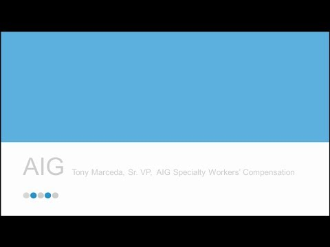 AIG Underwriter Roundtable Presentation