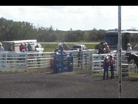 Whitewood Rodeo 2011
