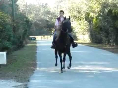 Abby Rode Rocky Mountain Twh