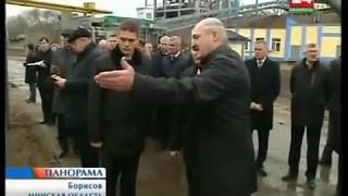 "Наказания за ОАО ""Борисовдрев"" 8 ноября 2013 года"