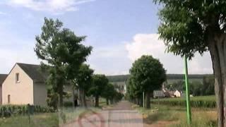 アロース・コルトンの葡萄畑20060621 Aloxe-Corton