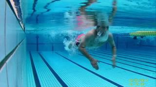 ゆったりバタフライ(水中映像)