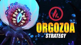 Big Dumb Strats - Orgozoa Mythic Guide Video