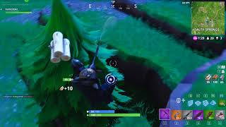 I told you 'bout my Deagle skills - Fortnite clip