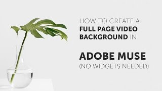 How To Make A Video Background In Adobe Muse No Widgets Needed