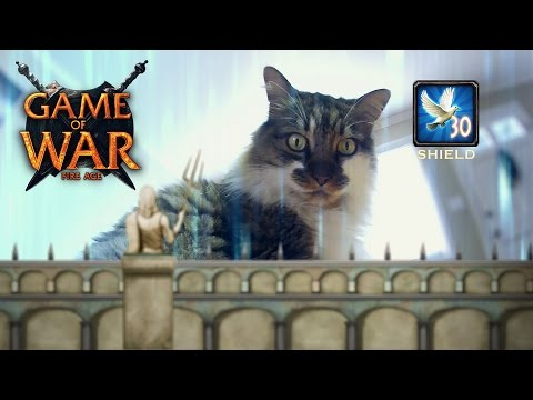 Game of War: Cats!