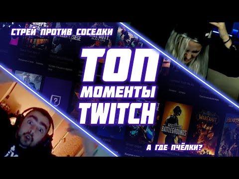 Моменты с Twitch | СТРЕЙ ПРОТИВ СОСЕДКИ | А ГДЕ ПЧЁЛКИ?
