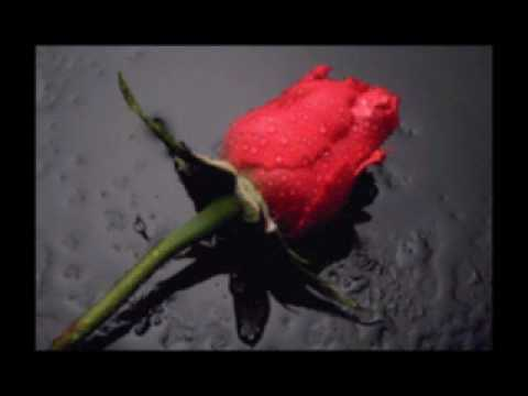 Recitacije poezija: Poslije ljubavi...