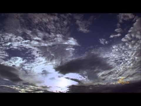 Тигран Петросян. Непрерывное движение (2014)из YouTube · Длительность: 3 мин52 с