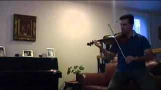 Persian Violin, Shoushtary