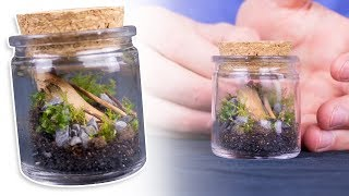 Making a MINI Detailed Terrarium