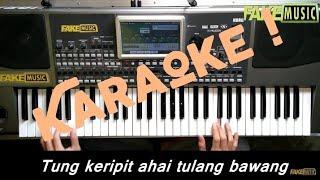 Tung Keripit Karaoke Dangdut Korg Pa900