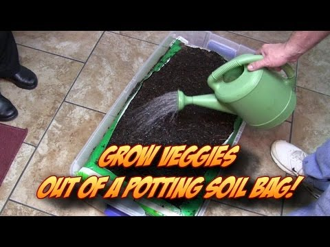 Growing Veggetables Straight Out of A Potting Soil Bag!  Indoors or Outdoors