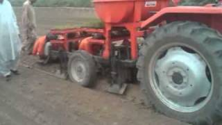 FarmAll Organic Rice Production using SRI Technology