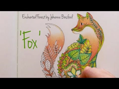 Enchanted Forest Johanna Basford Fox YouTube
