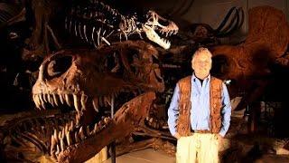 Tyranosaurus – mistr přežití  ceske cele filmy cz dabing Dokumentární HD