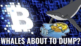 Bitcoin Whales Moving $700 Million in Bitcoin Ethereum XRP