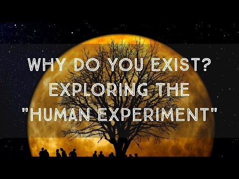 "Why Do You Exist? The ""Human Experiment"" from the Perspective of Inter-dimensional Beings"