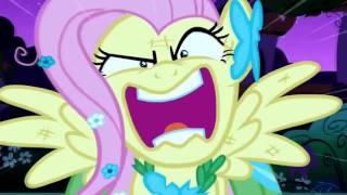 Fluttershy is bisexual...?