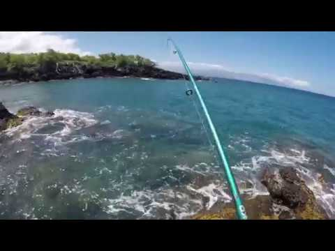 Hawaii Catch Clean and Cook Parrot fish (Uhu) fishing Outdoor Barbecue Kohala Coast