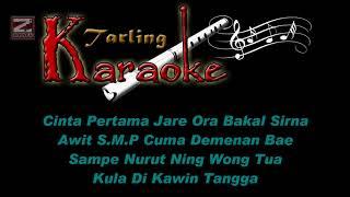 cinta-sejati---tarling-karaoke-lirik