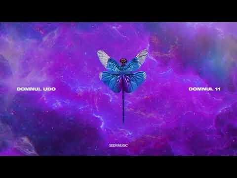 Domnul Udo - Amortizor (Audio)