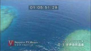 世界最大、2000キロに及ぶサンゴ礁の海を空から The World Heritage...