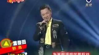 台灣文化與價值_葉啟田野鳥