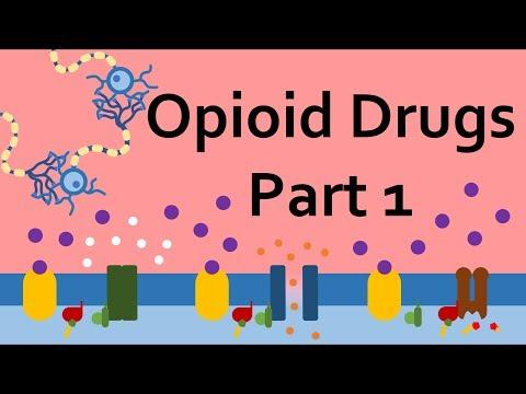 opioid-drugs,-part-1:-mechanism-of-action
