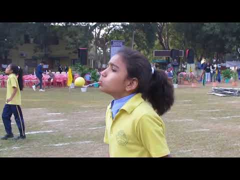 Annual athletic meet (Sport Day) 2017 - (Video - 3)