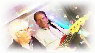Ronnie Gustafsson & The Blue Stars (2) - Back to the sixties