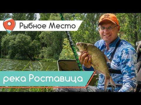 Рыбное место. Поплавок или фидер? Рыбалка не по плану.