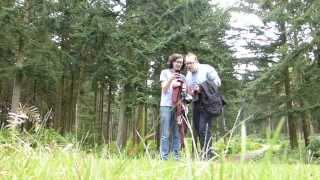 2 - New Forest Pt. 1 // Honeymoon