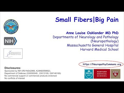 Anne Louise Oaklander | Small Fibers, Big Pain || Radcliffe