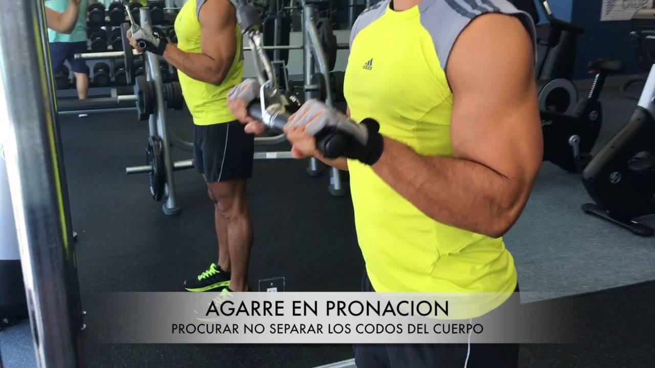 Triceps con barra en polea
