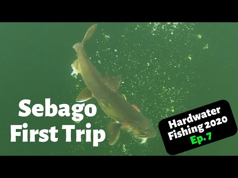 Ice Fishing Maine 2020 Sebago Lake Trout Ep.7