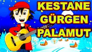 Kestane Gürgen Palamut Çocuk Şarkısı  Orman Ne Güzel Şarkısı  Orman Haftası