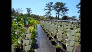Liberty Farms of Florida Hydroponic Farm FOR SALE