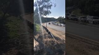 Taxi caught driving into oncoming traffic in Paulshof