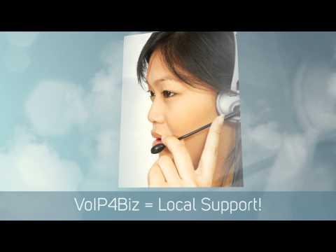 VoIP4Biz Chicago